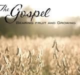 Sermon Videos Online